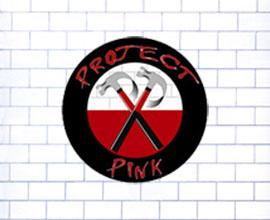 ProjectPinkTS.jpg