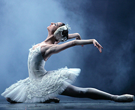 Swan Lake Thumbnail Revised.jpg
